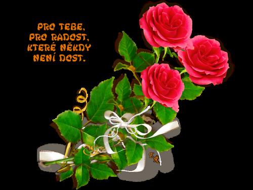 9d6751e33a_102454703_o2.png