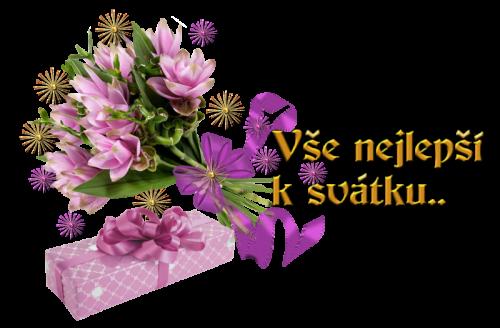 svatek698.png