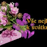 svatek698