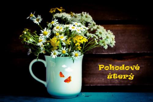 cup-5462998_960_720.jpg