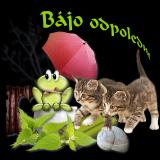 81b00a8d68_103983500_o2-1