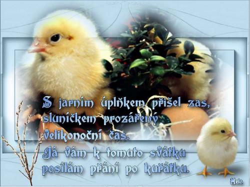 d4da0e5b1d_104099838_o2.jpg