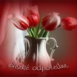 4666f171ce_103905414_o2