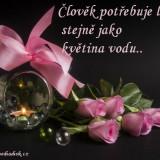 Citat-4
