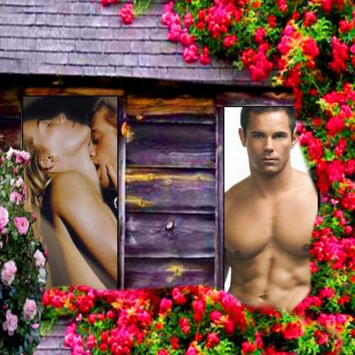 Roses-On-Log-Cabin-Miminko58.jpg