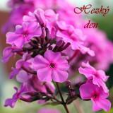 flowers-5480673_960_720