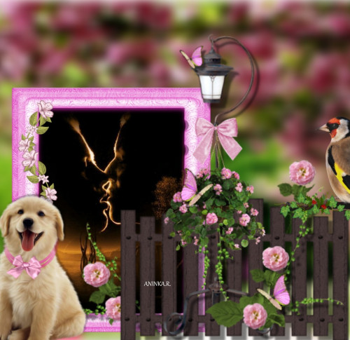 Summer-with-puppy-Miminko58.jpg