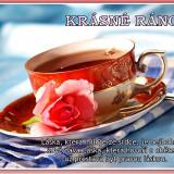 45037KRASNE-RANO