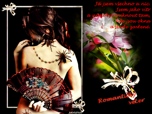 ROMANTICKY-VECER-k.png