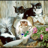 Cat-Miminko58-cats