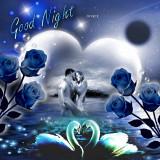 Good-Night---Queenie