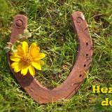horseshoe-5563788_960_720