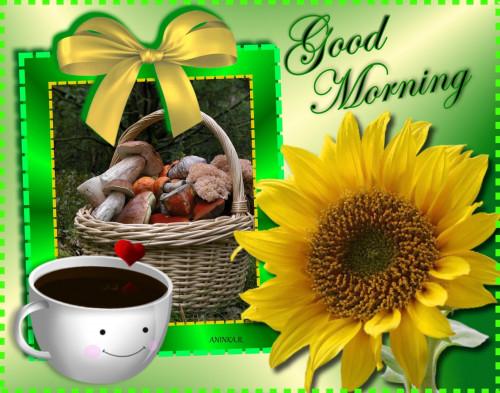 Good-Morning-Miminko58-8.jpg