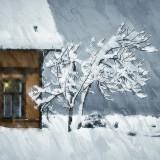 house-5680003_960_720