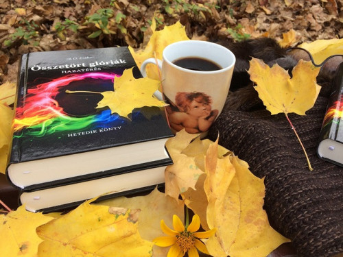 autumn-4762974_960_720.jpg