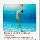a10668ff09_105026141_o2