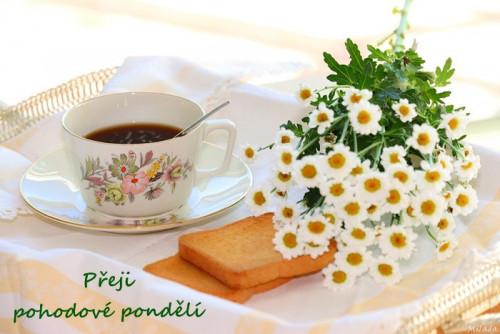 tea-5793844_960_720.jpg