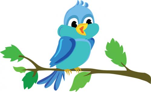 bird-982861_960_720.png