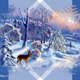 Zimni-obrazky-116