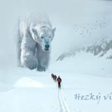 polar-bear-5850365_960_720
