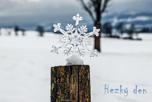 snowflake-5826679_960_720.jpg
