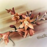 flowers-5893602_960_720