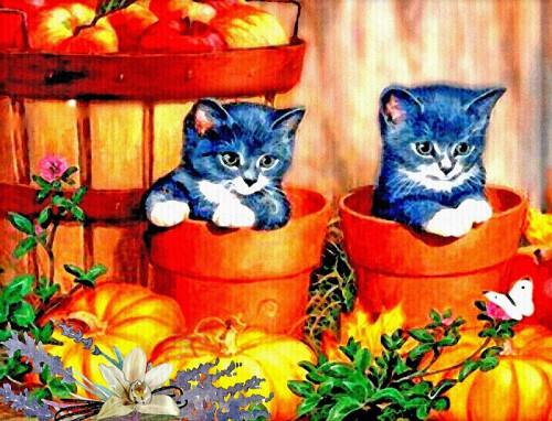 kittens 5846122 960 720