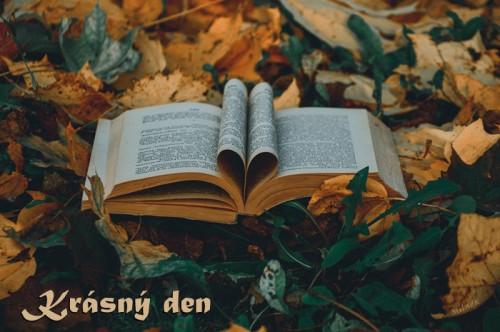 book-5920738_960_720.jpg