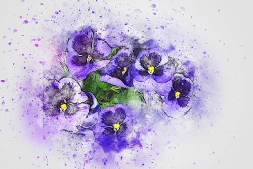 flower-2541935_960_720.jpg