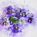 flower-2541935_960_720