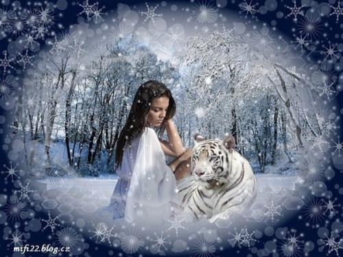 Zimní obrázky 141