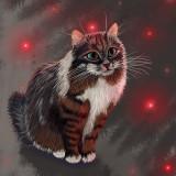 siberian-cat-5955263_960_720