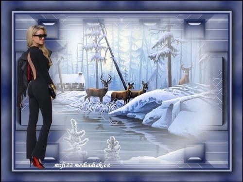Zimni-obrazky-157.jpg