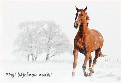 winter-1158280_960_720.jpg