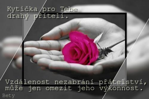KYTICKA-PRO-TEBE-....png