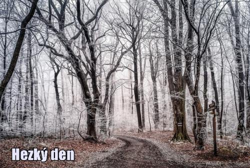 wood-3141219_960_720.jpg