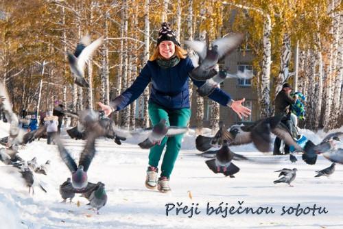 winter-3292133_960_720.jpg