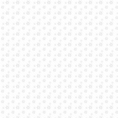 Paper-16.jpg