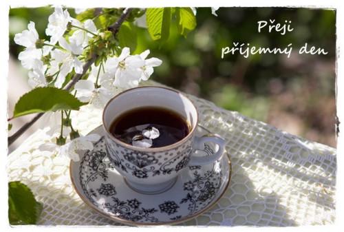 spring-3345378_960_720.jpg