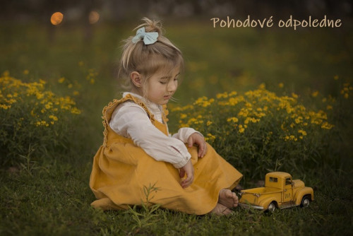 girl-6053037_960_720.jpg