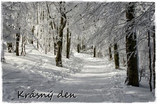 winter-6068586_960_720.jpg
