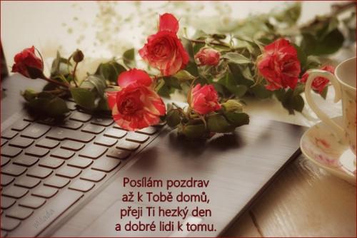 roses-5962104_960_720.jpg