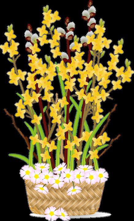 flowers 6084508 960 720