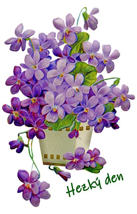 flowers 5973940 960 720