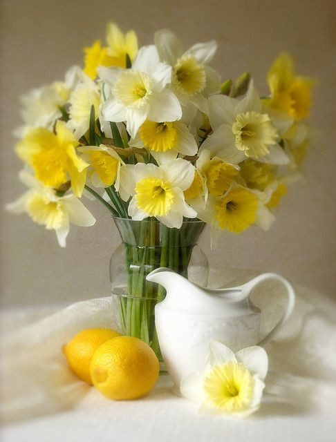 Still-Life-in-Yellows--Whites.jpg