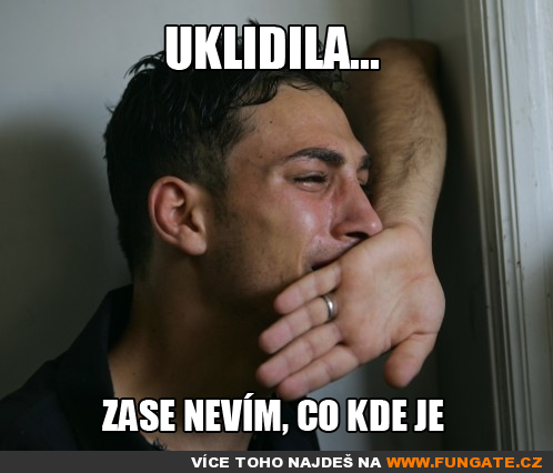 Uklidila_.png