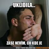 Uklidila_