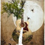 guitar-6104847_960_720
