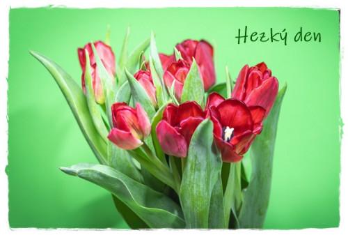 tulips-6128555_960_720.jpg