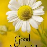 Good-Morningd54a60cdaddb71d4